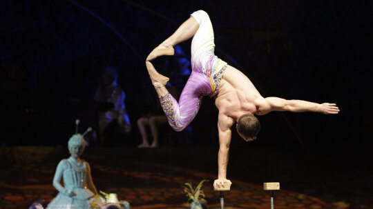 Do circus performers have special insurance?