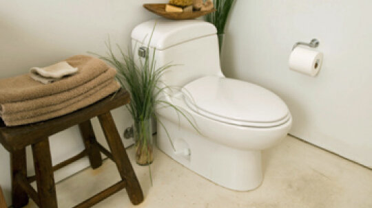 Should you clean your toilet for your plumber?