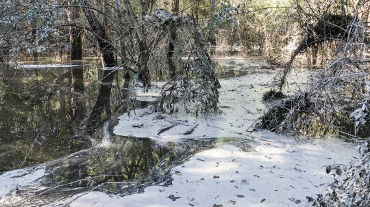 The Deadly Problem of Coal Ash