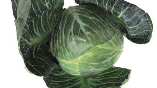 Collard Greens: Natural Weight-Loss Food