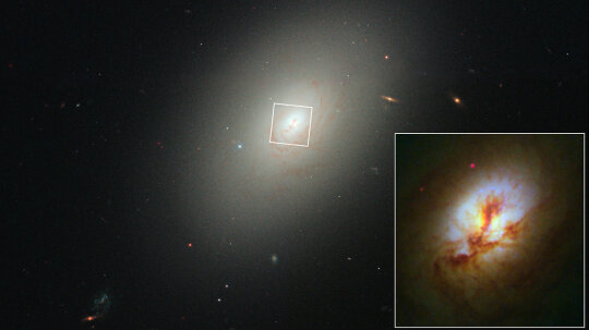 Why Galaxies Come in Different Shapes