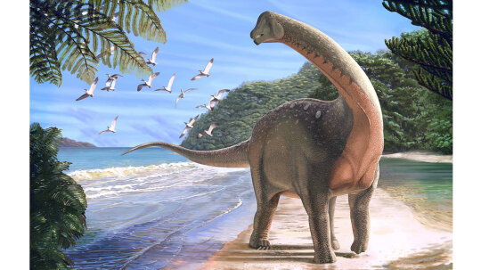 Rare Egyptian Fossil Find Holds Clues About African Dinosaur Migration