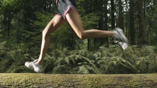 Does exercising affect varicose veins?