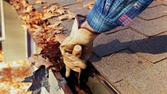 5 Fall Outdoor Cleaning Tips