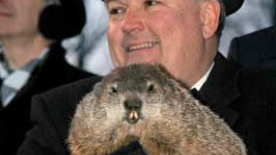 Family Vacations: Groundhog Day
