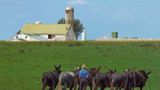 Family Vacations: Pennsylvania Dutch Country