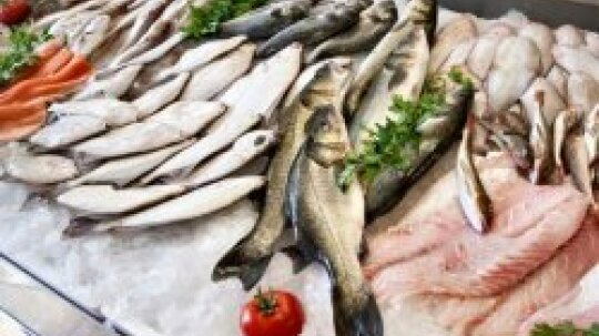 What are some common fish allergy symptoms?