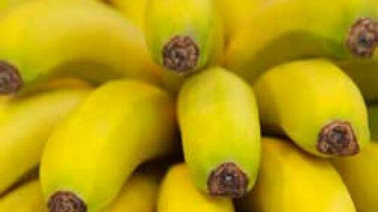 Bananas: Natural Weight-Loss Food