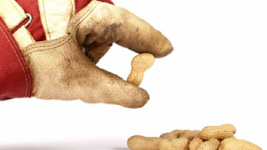 How many people die each year from peanut allergies?