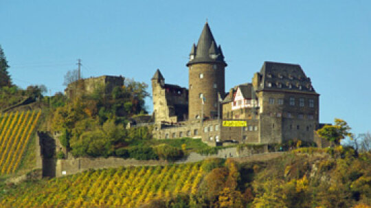 Ultimate Guide to German Wines