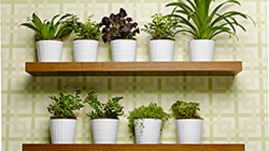 Greenify and Beautify: 3 Environmentally Friendly Home Decor Ideas