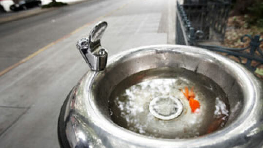 Can you get herpes from water fountains or toilet seats?