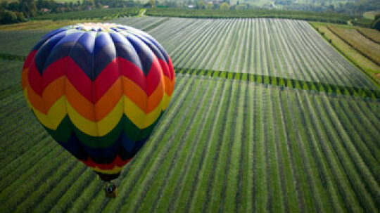 Can you take a hot air balloon through wine country?