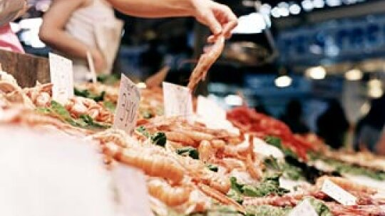 How to Shop for Sustainable Seafood
