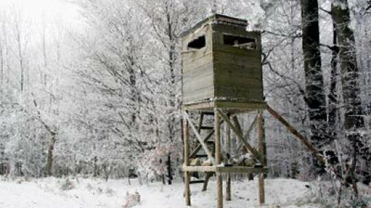How Hunting Blinds Work