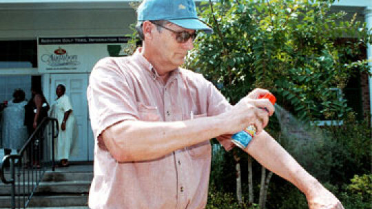 Are insect repellent and sunscreen a bad combination?