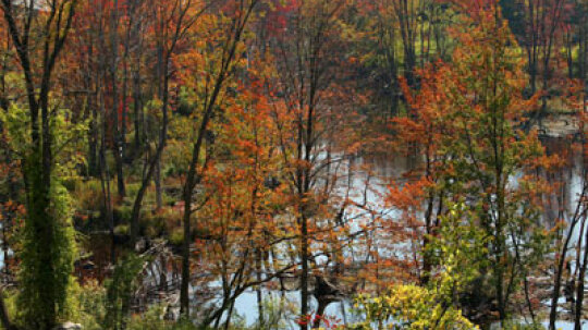 Top 10 New England Leaf-peeping Locales