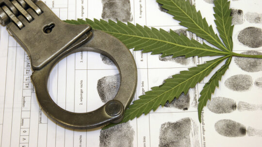 Would legalization make marijuana cheaper?