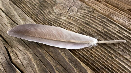 Has 'light as a feather, stiff as a board' ever worked?