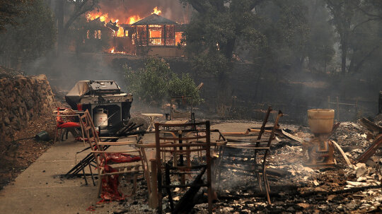 Marijuana Farmers Hit Hard by California Wildfires