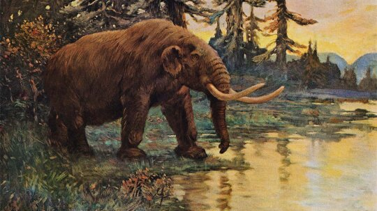 The Mastodon Boneyard That Stole Thomas Jefferson's Heart