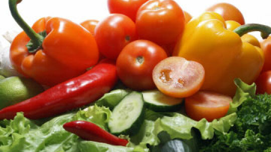 Mayo Clinic Diet: What You Need to Know