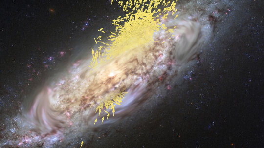 The Milky Way Is a Cannibal