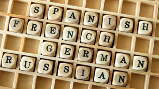 Do college admissions officers value students who speak more than one language?