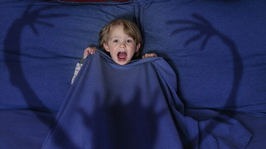 How Night Terrors Work