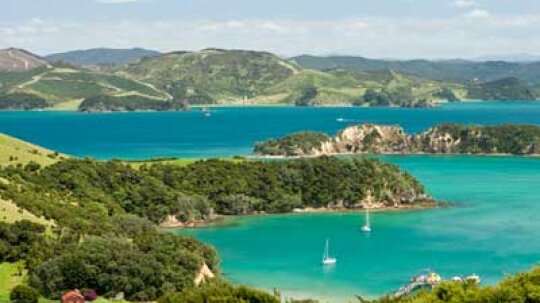 Ultimate Guide to the Northland Wine Region