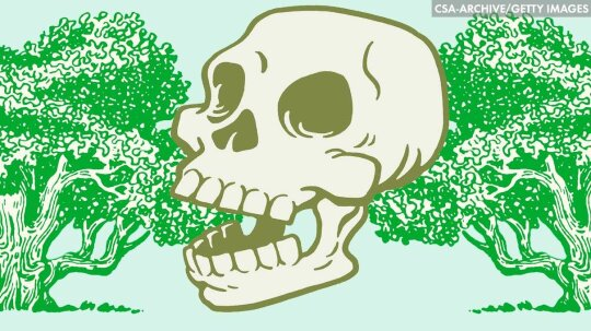 Turn Your Dead Body Into a Tree!