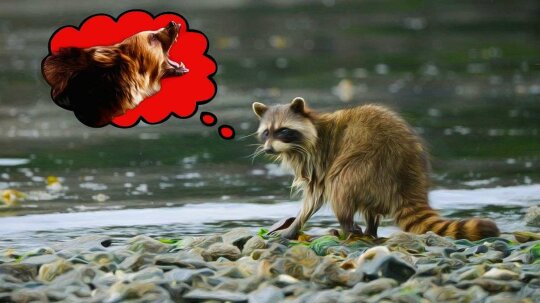 New Study: Fear Alone, Replacing Actual Predators, Can Change Ecosystems