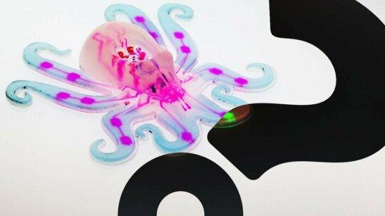 Octobot Is a Squishy, Cute, Autonomous Robot