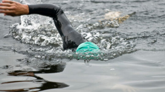 How Open Water Swimming Works