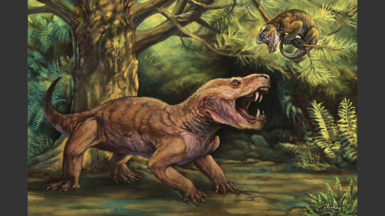5 Things You Didn't Know About Paleoart