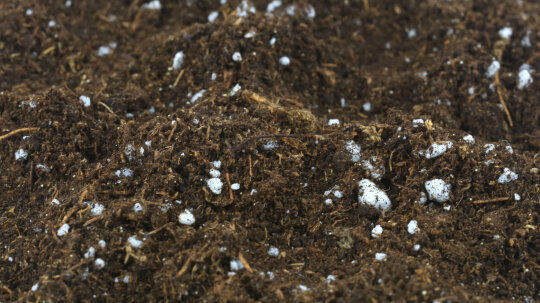 Perlite: It's Like Popcorn for Your Potting Soil!
