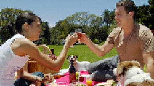 Top 10 Picnic Foods