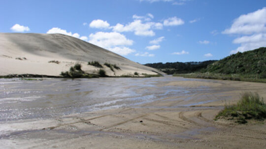 What if two people stumbled into quicksand: Would the heavier person sink faster?