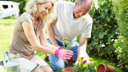 10 Jobs for Retired Couples