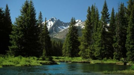 A Guide to Hiking Rocky Mountain National Park