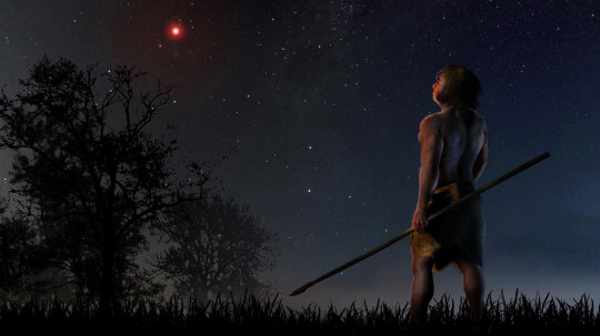 Early Humans Witnessed a Comet-scattering Stellar Encounter