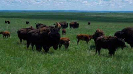 South Dakota Scenic Drives