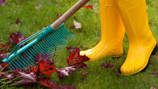 10 Spring Outdoor Cleaning Tips