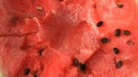 Surprising Health Benefits of Watermelon