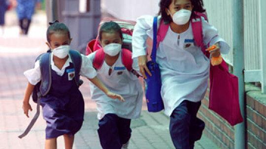 How Swine Flu Works