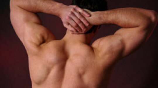 10 Tips on How to Get a Ripped Back