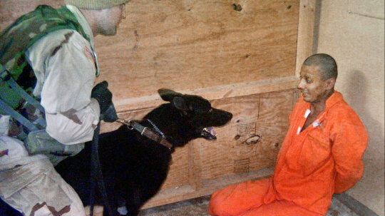 If Torture Doesn't Work, Why Do Governments Use It?
