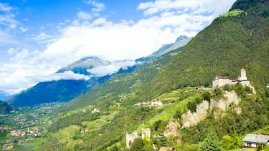 Ultimate Guide to the Trentino-Alto Adige Wine Region