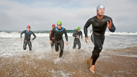 What are the various triathlon distances?