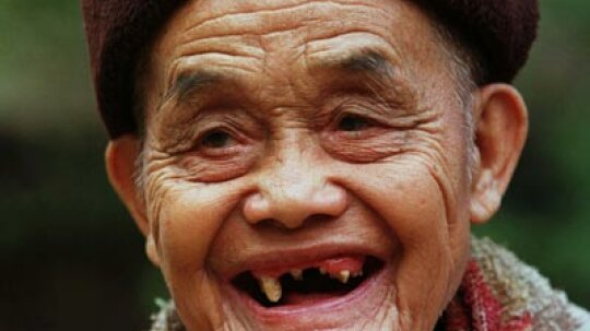 Grow New Teeth, Only 20 Minutes a Day